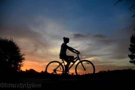 bikesilhouette-1-of-1_28543748106_o
