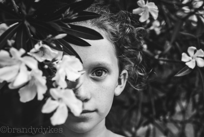 giselleflowertree_28498153921_o