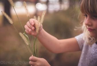 pickingfuzzygrass-1-of-1_27959143224_o