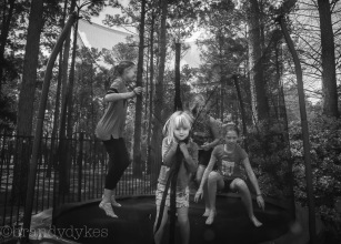 trampoline_27960970303_o
