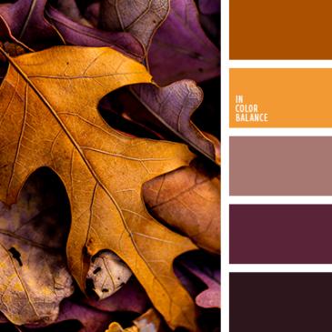 Fall Color Scheme